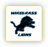 Wiregrass Lions